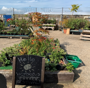 Waterfront garden centre with a sign greeting Victorious festival go-ers and several flowerbeds